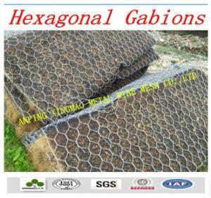 Professional Manufacturer of Gabion Mesh/Gabion (XM-123) pictures & photos