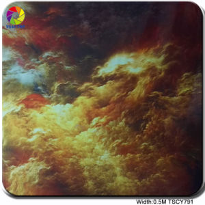 Tsautop 0.5m Tscy791 Hot Design Hydrographic Water Transfer Film Hydrodipping Hydr pictures & photos