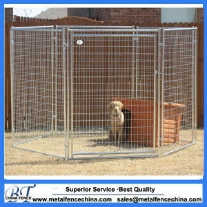 Wire Mesh Galvanised or Powder Coating Dog Kennel pictures & photos