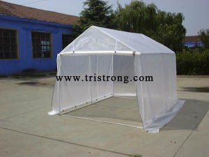 Portable Small Carport, Greenhouse (TSU-250A) pictures & photos