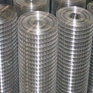 Hot DIP Galvanized Welded Wire Mesh pictures & photos