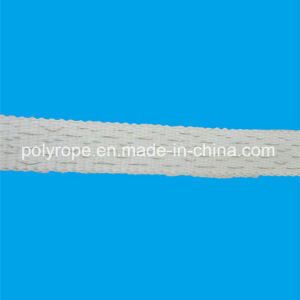 Electric Fence Polytape with Good Quality pictures & photos
