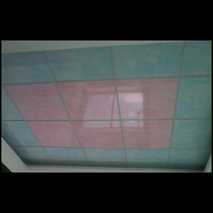 60CM Width PVC Panels for Ceiling and Walls pictures & photos