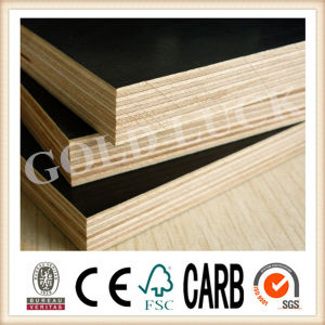 18mm Building Materials First Grade Film Faced Plywood pictures & photos