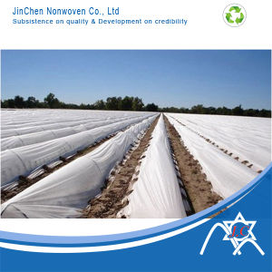 Non-Woven Fabric for Agriculture pictures & photos