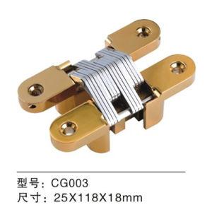 304 Stainless Steel Hinge/Concealed Door Hinge (CG003) pictures & photos