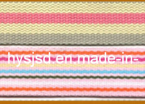 Many Functions and Good Accessory Polyester Band Webbing pictures & photos