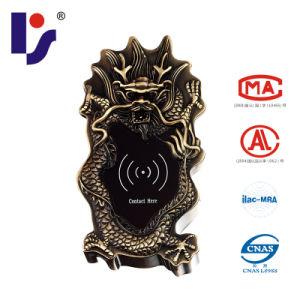 RF/Em Card Electronic Sauna Lock (EMDragon-GB)