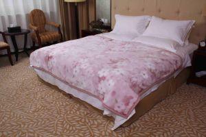 Raschel Printing Polyester Blanket (MQ-LAPB015) pictures & photos