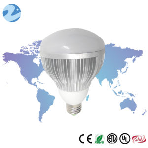 E26-12W High Brightness LED Br Lamp Br30 Bulb