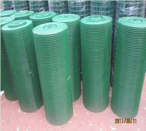 Galvanized or PVC Coated Iron Welded Wire Mesh pictures & photos
