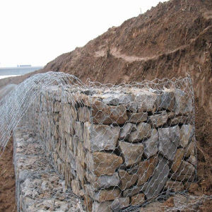 PVC Coated Hot Dipped Galvanized Gabion Box/Gabion Mesh pictures & photos