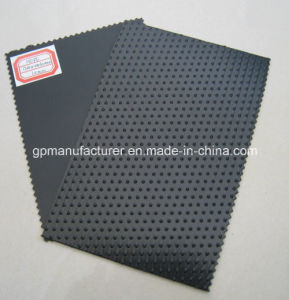HDPE Geomembrane with Smooth&Textured Surface pictures & photos