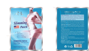 Best Share Fat Burning Patch, Body Shaper Product pictures & photos