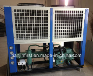 Frozen Chicken Cold Storage Room Condensing Unit pictures & photos