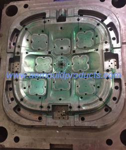 High Precision Plastic Mould for Big Shell pictures & photos