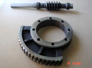 OEM Service Worm Shaft and Worm Wheel pictures & photos