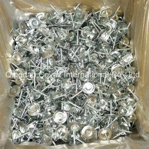 Round Cap Masonry Nail/ Metal Cap Masonry Nail pictures & photos