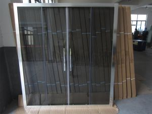 Jordan Hot Selling Shower Screens with Grey Color Glass pictures & photos
