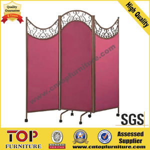 Folding Strong Steel Activities Screen pictures & photos