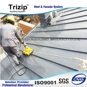 Hot Sale Villa Roofing Board pictures & photos