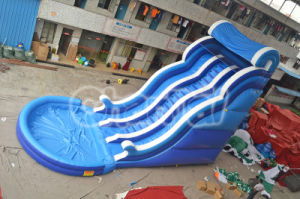 Blue Wave Inflatable Water Slide with Pool Chsl383 pictures & photos
