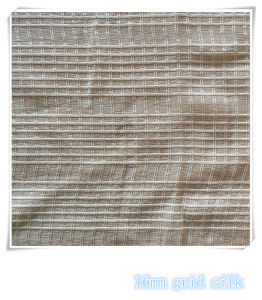 Grid Silk Fabric for Women′s Dresses pictures & photos