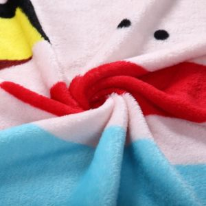 Double Brush Printed Fleece Blanket pictures & photos