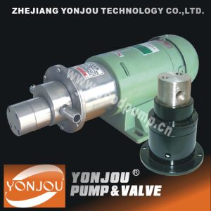 Ss Magnetic Gear Pump (CQCB) pictures & photos