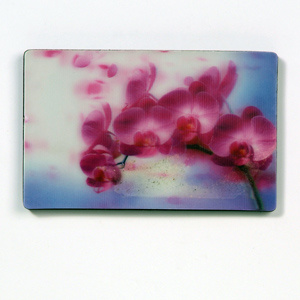 Beautiful Designed 3D Fridge Magnet pictures & photos