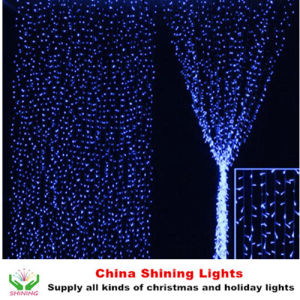 Colorful Outdoor Decorative LED Holiday Lights pictures & photos