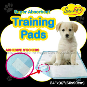 Super Absorbent Pet Toilet Training Pads pictures & photos