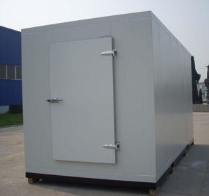 Deep Freezer Cold Room for Meat and Fish pictures & photos