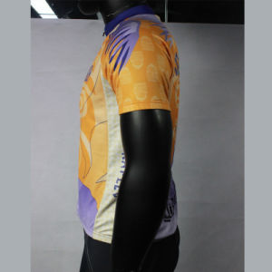 Customized Quanlity Cycling Jersey with Short Sleeve pictures & photos