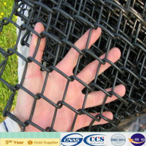 Sport Fence PVC Coated Chain Link Fence (XA-CLF15) pictures & photos