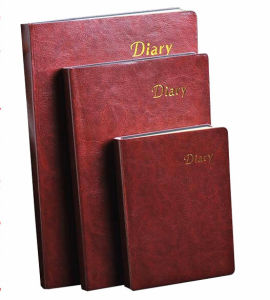 2016 New Leather Leather Journals pictures & photos
