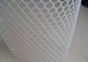 Black Plastic Mesh From China Supplier pictures & photos