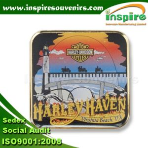 Rectangle Epoxy Promotion Lapel Pin (B616) pictures & photos