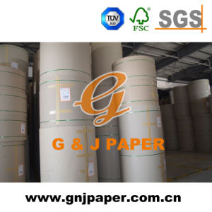 Cheap Price Brown Test Liner Paper in Roll for Sale pictures & photos