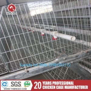 Poultry Farm Equipment Bird Cage for Laying Hens pictures & photos