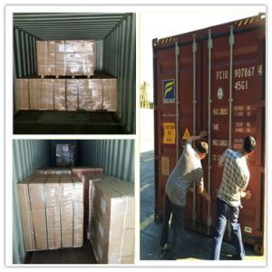 Bus A/C Filter Drier Tk Sr50 66-8344 Carrier 24060105300 pictures & photos