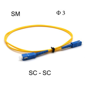 Fiber Optic Sc/Sc 1m Sm Simplex Patch Cord pictures & photos