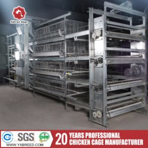 Chicken Farm H Type Chinese Bird Cage for Poultry Broilers pictures & photos