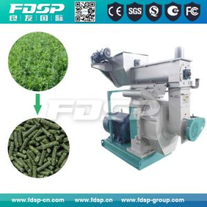 Supply Ring Die Pellet Press/1-2tph Biomass Sawdust Pellet Mill Machinery pictures & photos