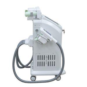 2017 China Manufacturer Cryolipolysis Machine for Sale/Criolipolisis Machine Cryolipolysis pictures & photos