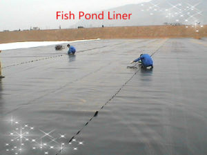 HDPE Geomembrane 0.5mm for Dam Liner pictures & photos
