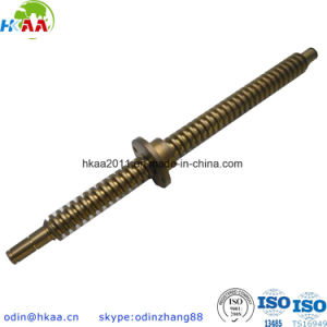 Stainless Steel Stepper Motor Acme Lead Screw/Brass Trapezoidal Nut pictures & photos
