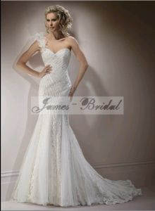 Wedding Dress and Wedding Gowns (SW0026)