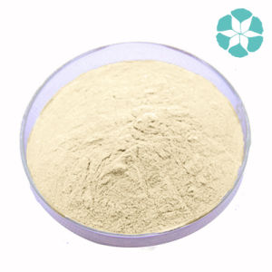 Phytosterol / Soybean Extract / Glycine Max Merr pictures & photos