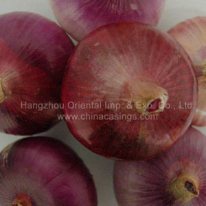 Fresh Red Onion (F09)